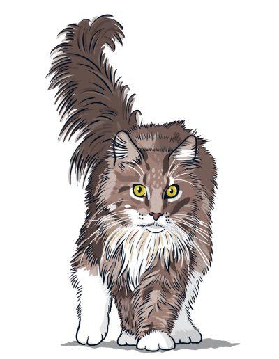 Antjes Katzen 1