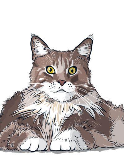Antjes Katzen 2